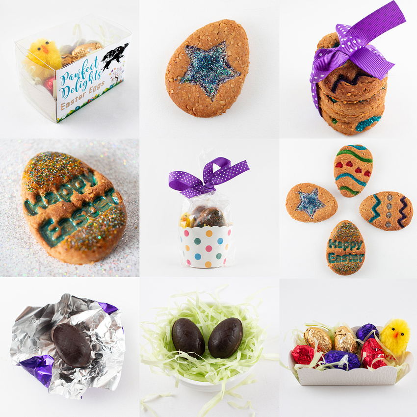 Pawfect Delights Easter